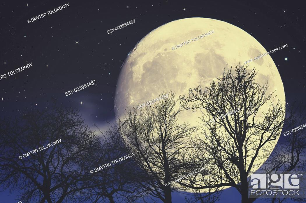 Stock Photo: Under Moon light, abstract fantasy backgrounds.