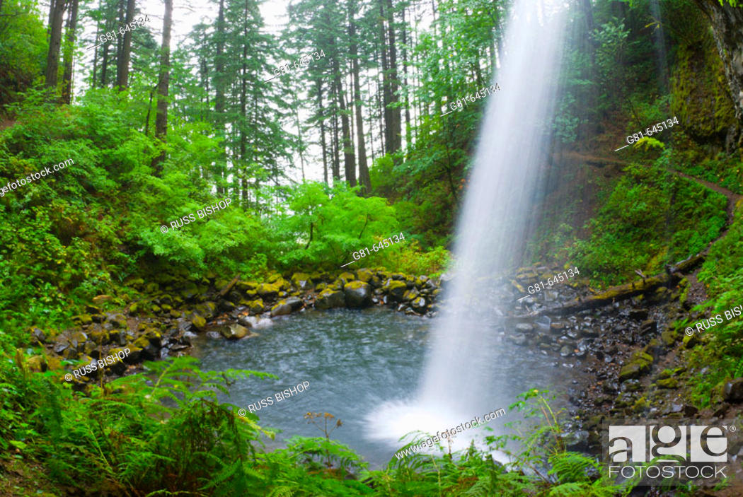 Stock Photo: Ponytail Falls, Columbia River Gorge National Scenic Area, Oregon, USA.