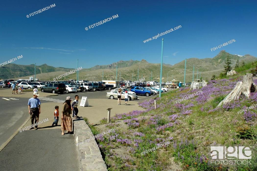 Mount St  Helens National Volcanic Monument, WA, Washington