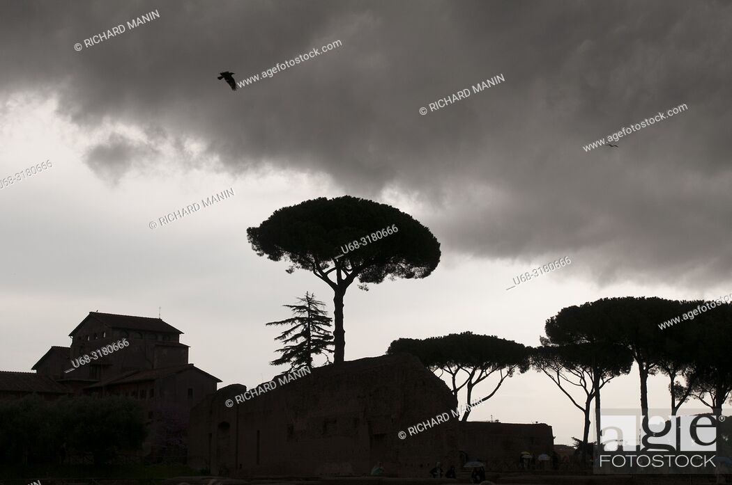 Stock Photo: Italy, Rome, Roman Forum or Forum of Rome, archaeological site, main square of ancient Rome, Stadio Palatino.