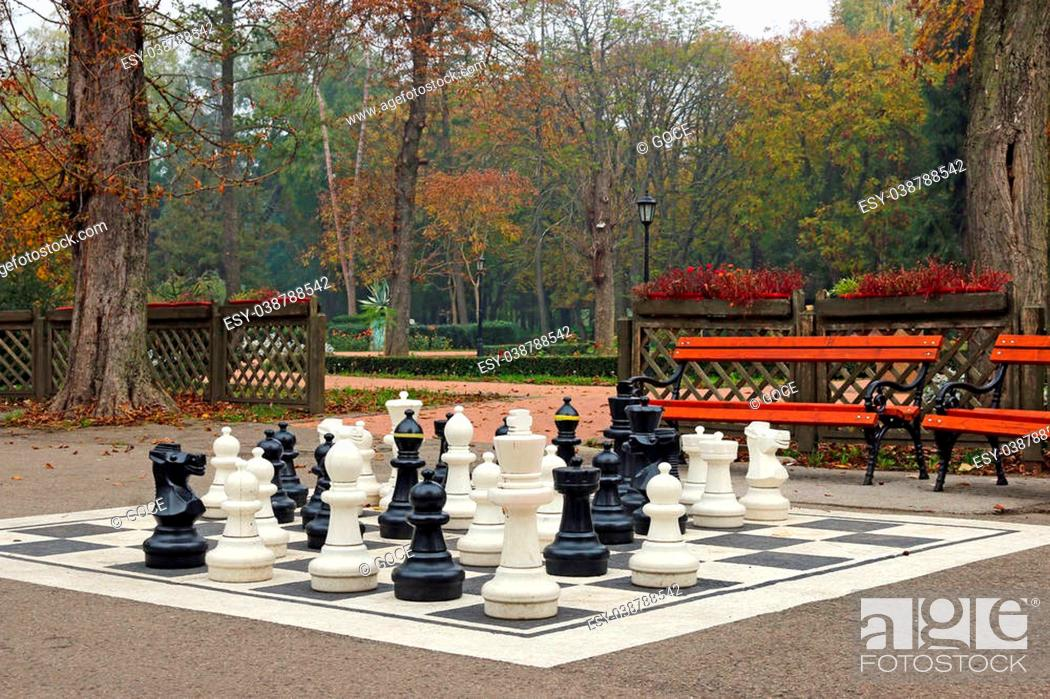 Stock Photo: chess figures in autumn park.