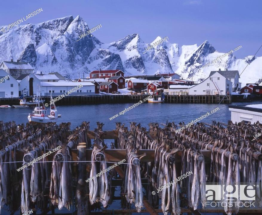 Stock Photo: Hamnöy Lofoten Norway Norge.
