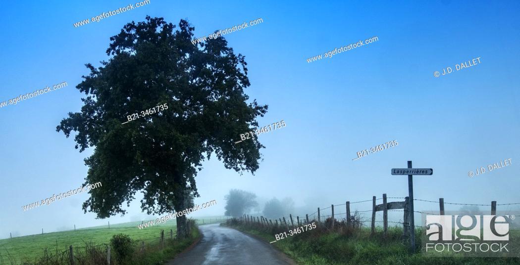 Stock Photo: France, Auvergne, Cantal, autumn near Maurs.