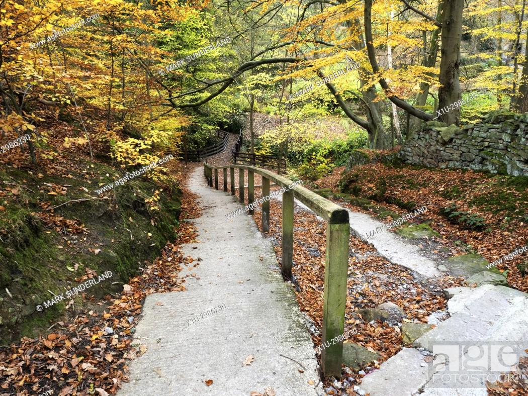 Stock Photo: Autumn Colours in Goitsock Wood at Hallas Bridge near Cullingworth, West Yorkshire, England.