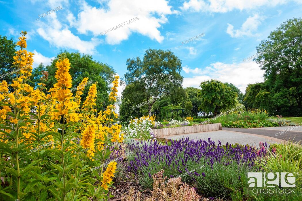 Stock Photo: Blooming colorful flowerbeds in summer park in Airdrie, North Lanarkshire, Scotland.