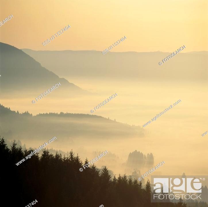 Stock Photo: The Misty Sea.