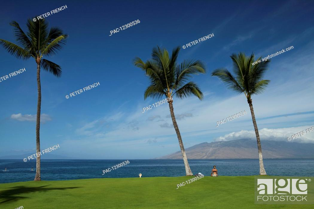 Stock Photo: Women meditating on the grass, West Maui mountains from Wailea, coconut trees, stand up paddlers, near Kihei boat launch; Kihei, Maui, Hawaii.