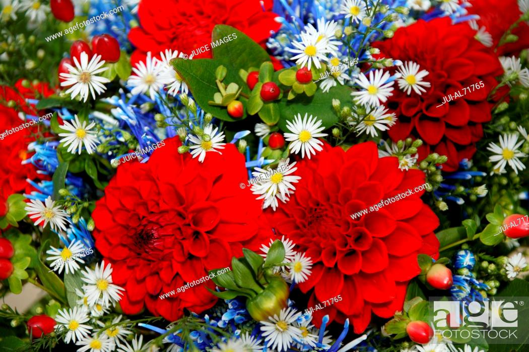 Stock Photo: Detail view of a bunch of flowers, including red Dahlias.