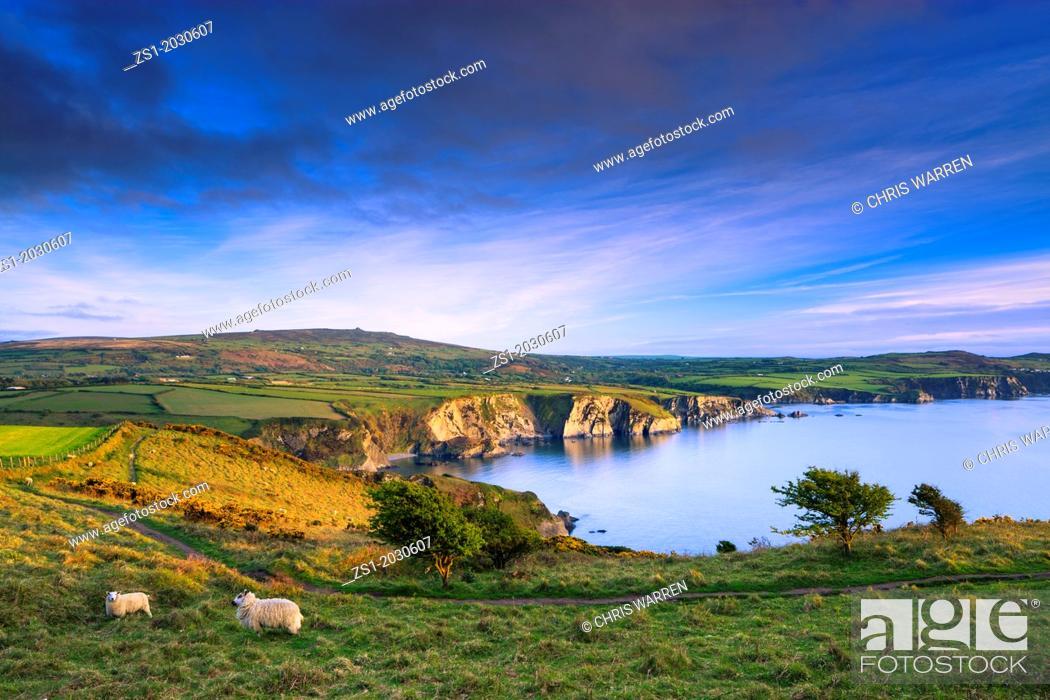 Stock Photo: Pwllgwaelod Fishguard Pembrokeshire Wales.1015.