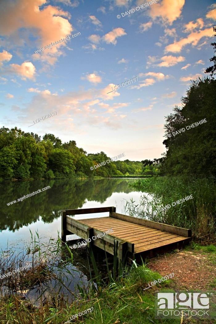 Stock Photo: A fishing platform at Cannop Pond. This man-made pond was fed from a local colliery and the slightly warm nature of the water made the pond an attractive.