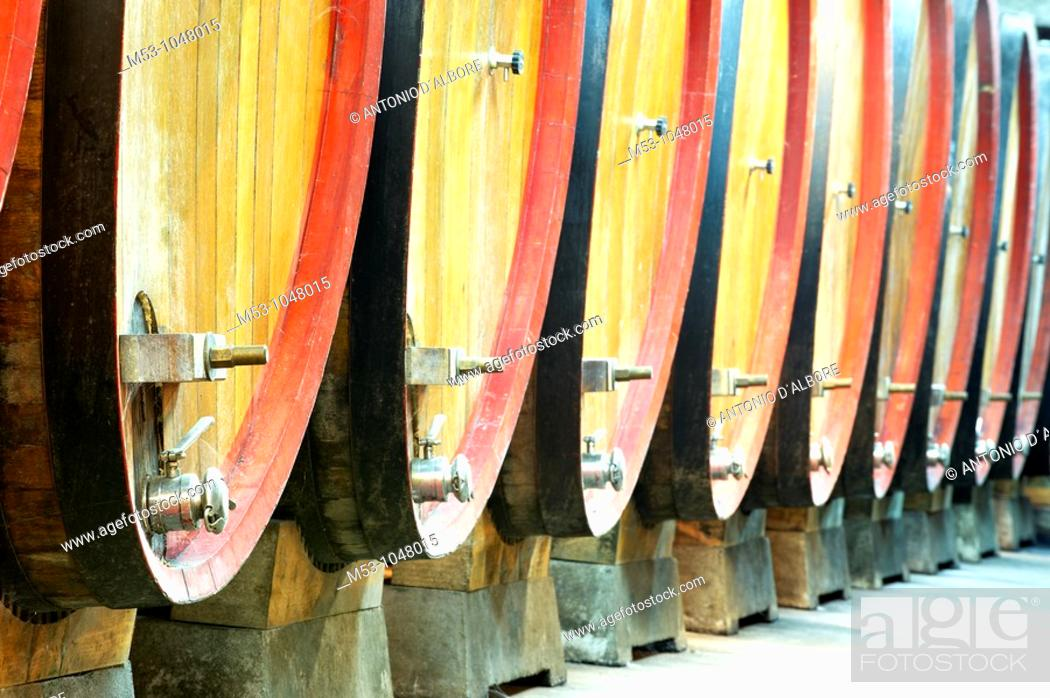 Stock Photo: large size wooden aging barrells lined up in a large underground winery  dugenta  province of benevento  italy  europe.
