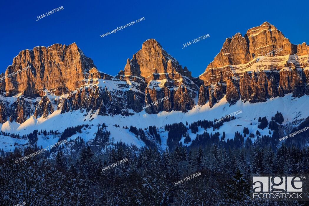 Stock Photo: Alps, view, tree, mountain, mountain panorama, mountains, massif, Brisi, trees, Churfirsten, rock, cliff, spruce, spruces, mountains, Heidiland, sky, panorama.