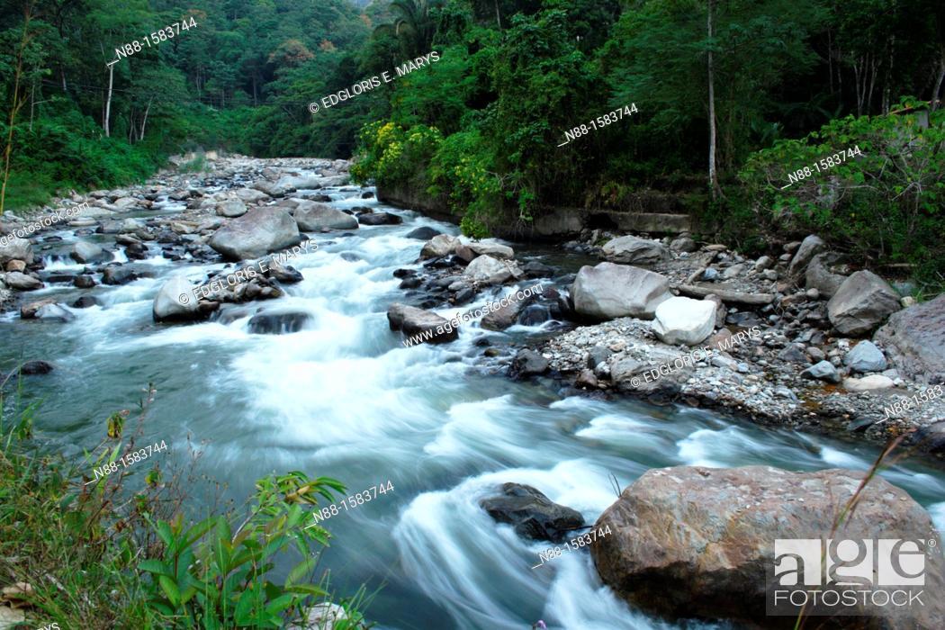 Stock Photo: Santo Domingo River, Barinas, Venezuela.
