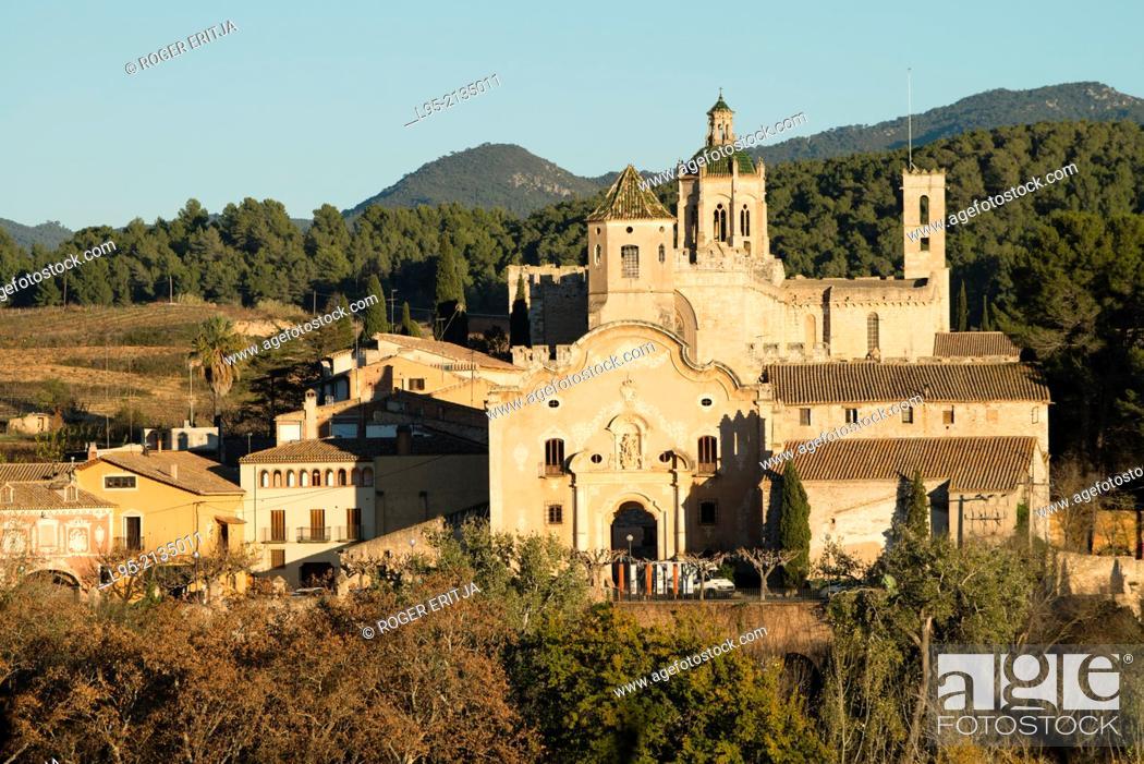 Stock Photo: View of the monastery of Santes Creus, Spain.